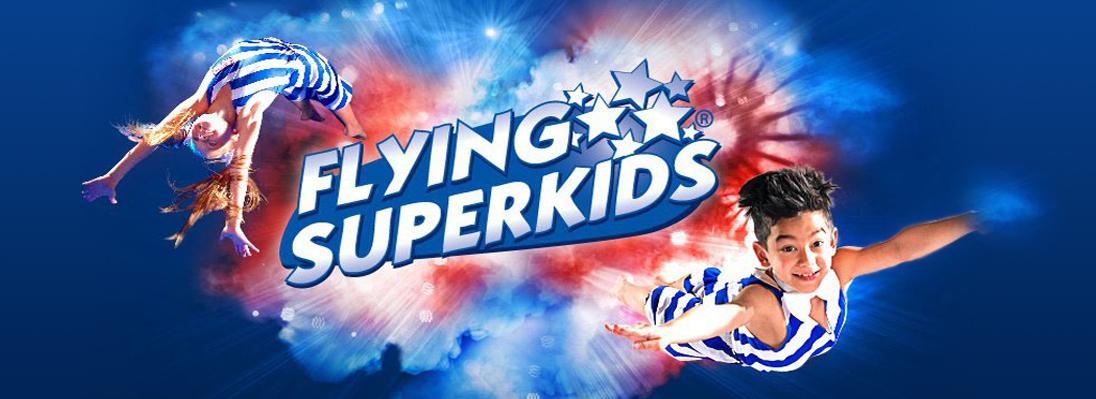 livol_banner_flying
